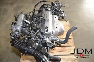 Jdm Honda Accord 1994