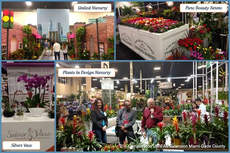South Florida Plant Show Tpie Uf Ifas Extension Miami