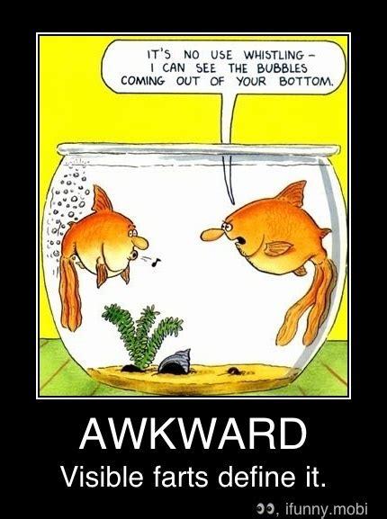 Funny Fish Sea Quotes