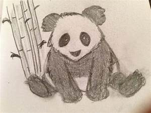 Cute Panda Bear drawing. | My Drawings/Sketches ...