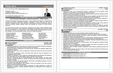 Professional Cv Sles by 0569626391 Writing Expertz Professional Cv Writing Company