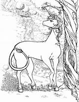 Unicorn Draw Coloring Licorne Adults Standing Sketch Pencil Colorare Tutorials Unicorns Archziner Unicorno Tree Printable Dragon Adulti Drawing Adultes Coloriages sketch template