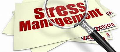 Stress Management Coscia Moosa Event Service Gulf