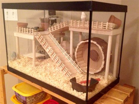 aquarium cages for hamsters hamster cage diy aquarium conversion hamster diy aquarium hamster cages and