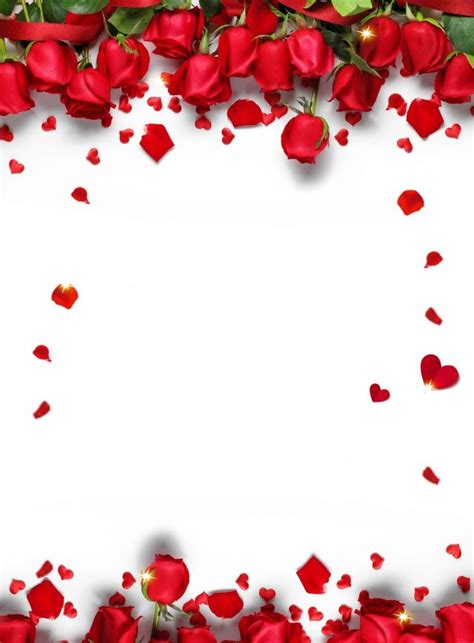 romantic chinese valentines day red rose petals background