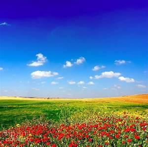 Le plus beau paysage fleuri voyez les meilleures images for Couleurs chaudes et couleurs froides 6 le plus beau paysage fleuri voyez les meilleures images