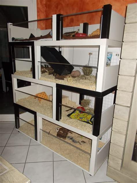 fabriquer meuble de cuisine un meuble à cochon d 39 inde à fabriquer à petit prix