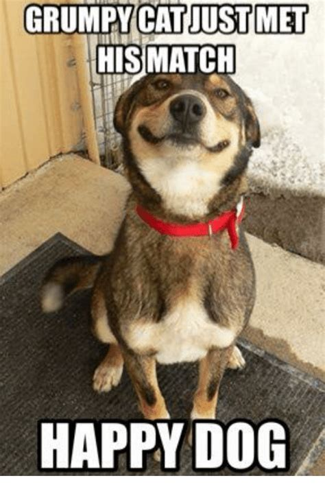 Happy Dog Meme - image gallery happy dog meme
