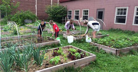 school victory garden plots growing vegetables  school