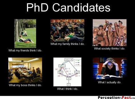 Phd Candidates  What People Think I Do, What I Really