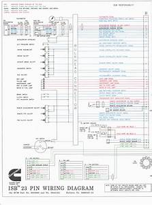 Cummins Celect Ecm Wiring Diagram