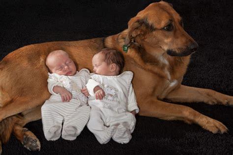 hunde und kinder beste freunde radio tirol