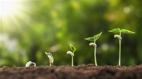 reasons  small steps      tackle big goals