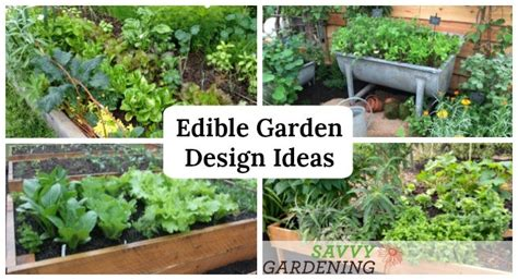 Edible Garden Design Ideas To Boost Production And