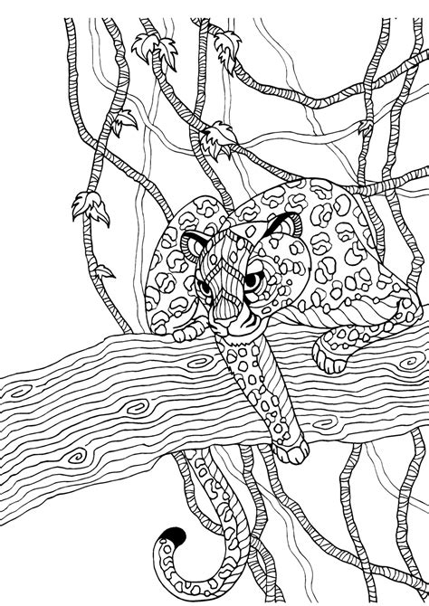 Cheetah adult colouring page : Colouring In Sheets - Art