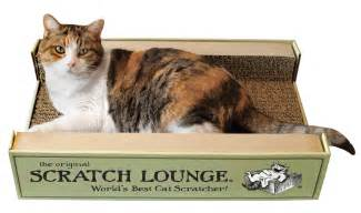 cat lounge bonnie s gift picks for dogs cats and the
