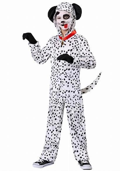Costume Dalmatian Costumes Dog Delightful Child Adults