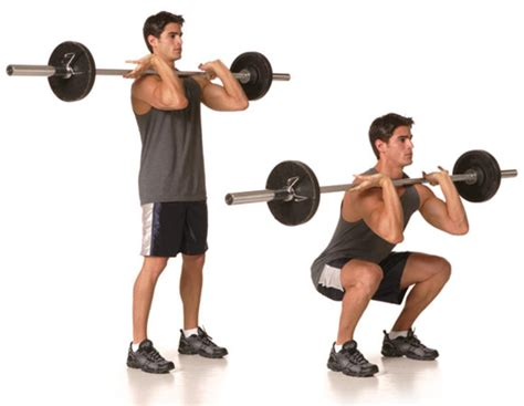 proper technique for the front squat fit tip daily