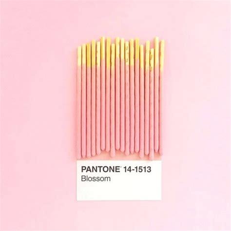 pantone pink tumblr