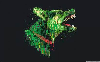 Hacker 4k Wallpapers Cyber Hacking Backgrounds Hackers