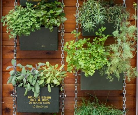 Vertical Garden Brisbane by Why A Vertical Garden Is The Addition To Your Yard