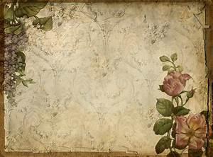 Pretty Summer Texture Flickr Photo Sharing!