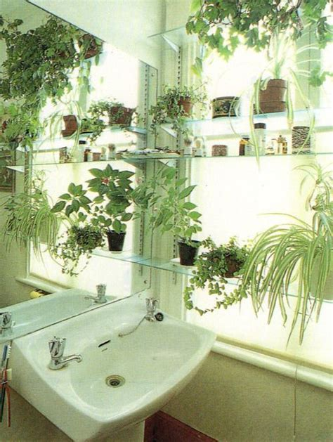 plants in bathroom with no windows 17 best ideas about glass shelves on joanna