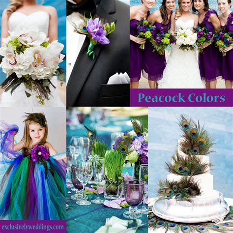 mauve bridesmaid dress your wedding colors peacock exclusively weddings wedding ideas and more