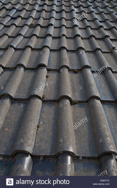 clay roof tiles on barn roof stock photo