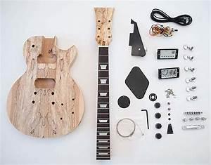 Les Paul Guitar Kits  Remarkable Diy Classics You Can