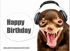 Geburtstagsglückwünsche lustiges Bild
