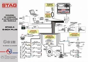 Stag-4 Q-box Plus