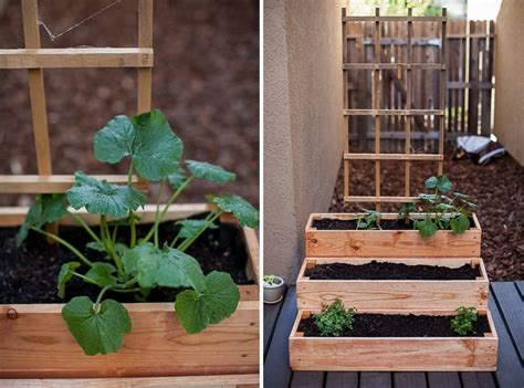 patio herb garden containers ideas home inspirations