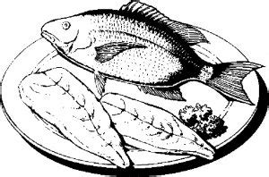 seafood coloring pages  kids updated