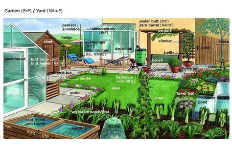 Is Backyard One Word by Garden Or Yard Vocabulary With Pictures Learning