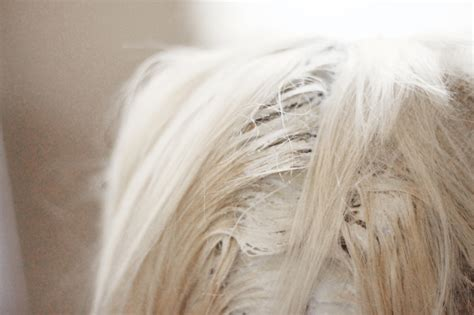 Tips For Maintaining Platinum