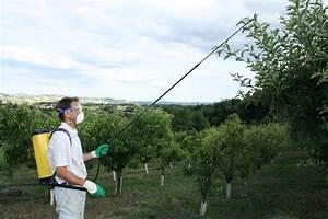 Lance Telescopique Pulverisateur 6m : nouveau les accessoires berthoud pour traiter en hauteur ~ Melissatoandfro.com Idées de Décoration