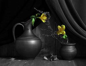 Still life black and white photography with color | Black ...