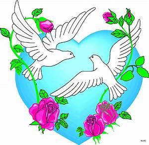 Love Birds Clipart Free   Free download best Love Birds ...