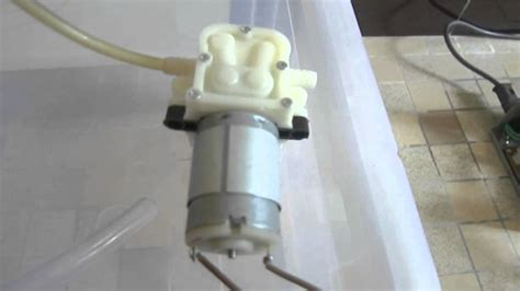 fabriquer un humidificateur pour terrarium vivarium