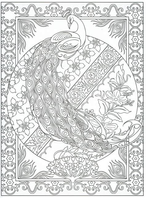 adult coloring pages peacock coloring home