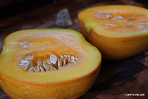 pumpkin recipes with real pumpkin the real mccoy pumpkin pie recipe stark insider