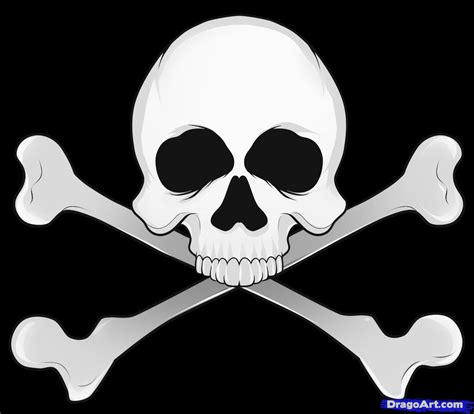 How Draw Skull Step Skulls Pop Culture