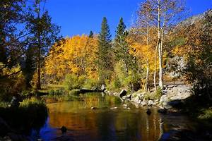 Finding Fall in Bishop, California - No Back Home  Fall