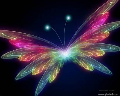 3d Colorful Butterfly Wallpapers Background Backgrounds Desktop