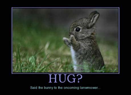 Meme Hug - hug meme picture webfail fail pictures and fail videos
