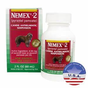 Nemex 2 p 4371