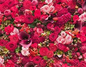Blumen Bewässern Mit Wollfaden : blumen und str u e blumen kuhn f r jeden anlass f r ~ Lizthompson.info Haus und Dekorationen