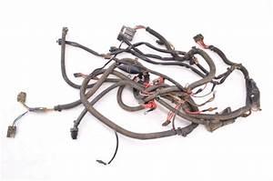 02 Polaris Sportsman 700 Twin 4x4 Wire Harness Electrical