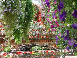 beautiful gardens | ... stylish zone beautiful spring hd ...
